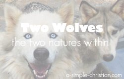 two wolves/Two Wolves - A Cherokee Legend