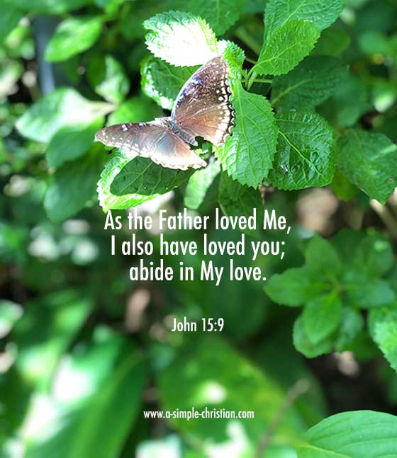 The Love of Jesus - Abide in His Love - John 15:9